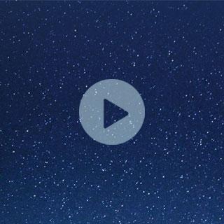 Vidéo Хитрушка: Это попугайчик Чика и любимая игрушка))