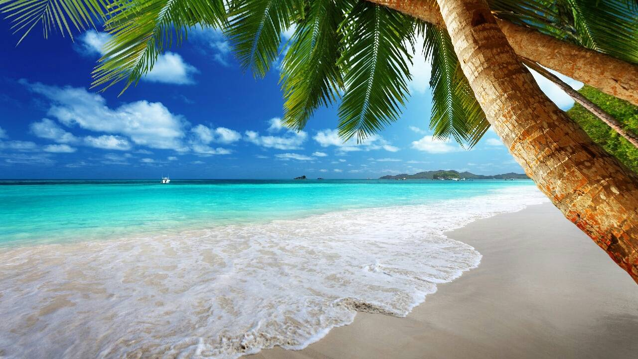пляж лето жара photo elena