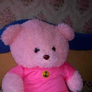 Фотография nadyxa: Люблю мягкие игрушки. Особенно мишек.