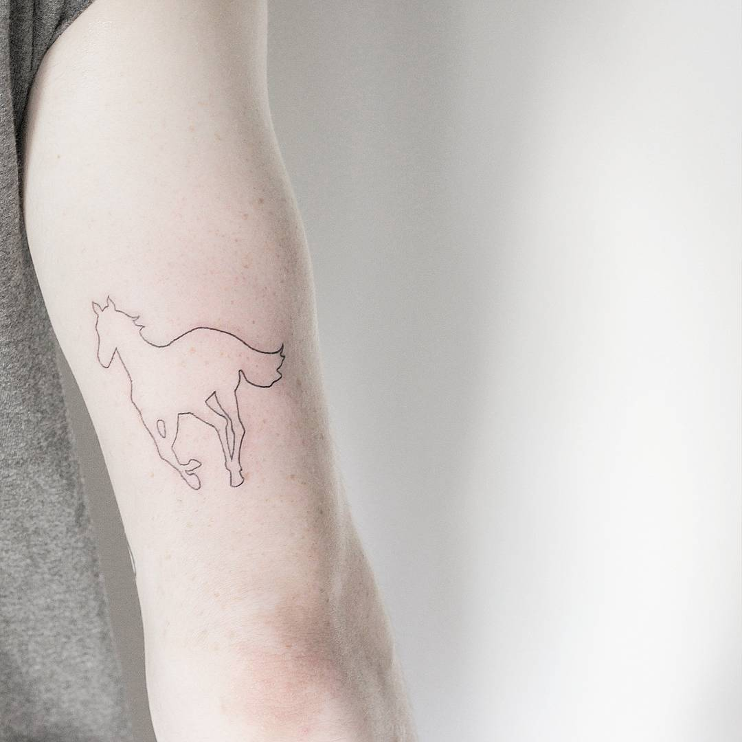 #tattoo #black #white #horse фотография Gerda