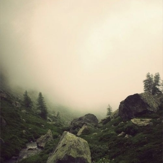 Фотографія Vitaly : #stones #wood