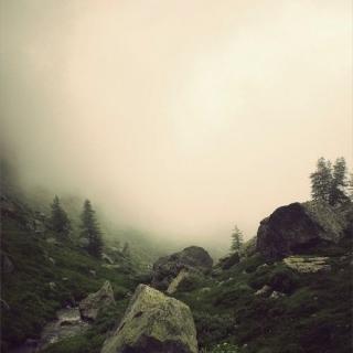 Photo Vitaly : #stones #wood