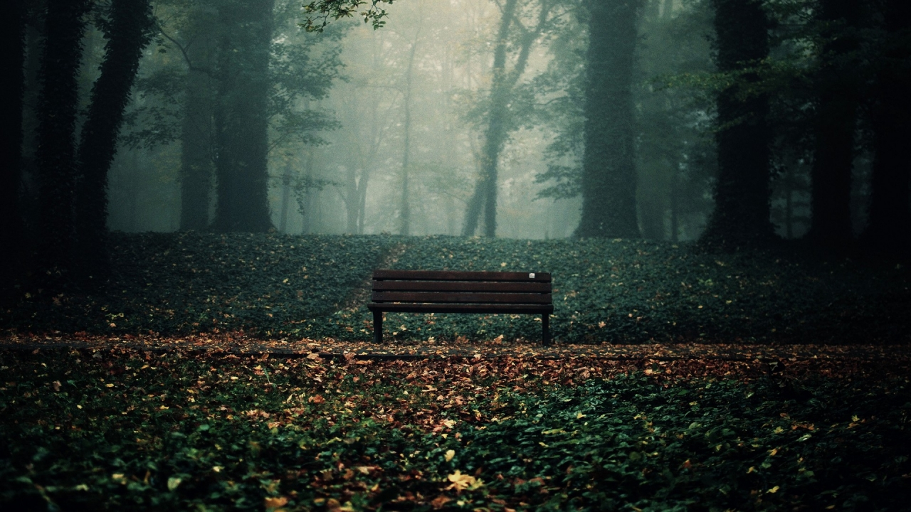 #wood #Bench #darkness #green #brown #black foto Vitaly