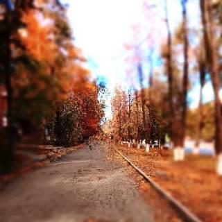Photo ferum: Осенний денёк🍁🍂