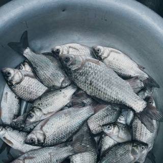 Photo sany96: рыбалка