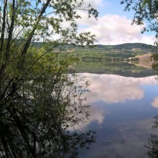Фотография Наталья: 154 км...Малая Царевщина.Река Сок.
