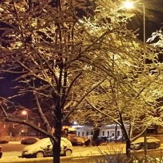 Фотография vitalij: Это зимний вечер.