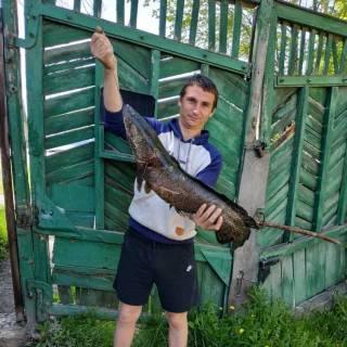 Фотография Александр: змей голова 6 кг