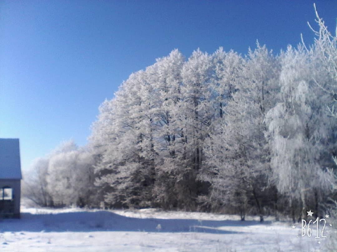 зима 2017-2018 фотография Василь
