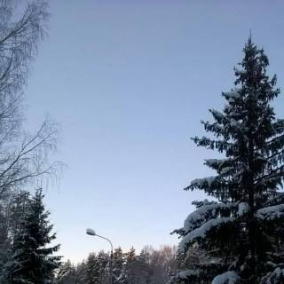 Фотография Николай: зима