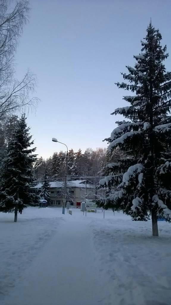 зима фотография Николай