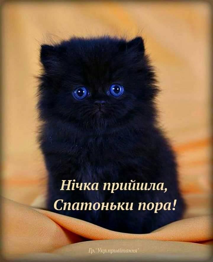Солодких вам снів photo ulia