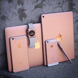 Фотография Яблочник: Для ценителей розового. #Apple #ApplePink #pink