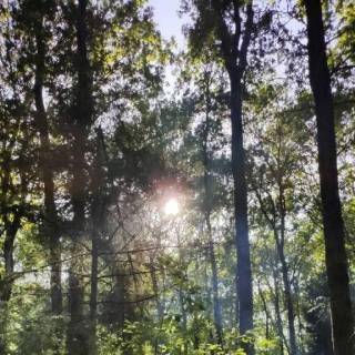 Photo vova: #природа)