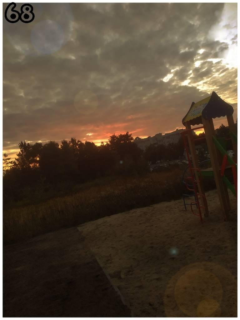 закат, ліс, небо, природа foto Maksym