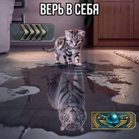(@newuser26) на InCamery.Ru