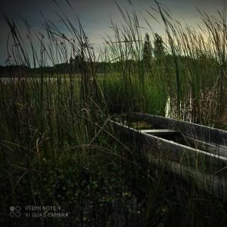 Фотография Nady на InCamery.Ru